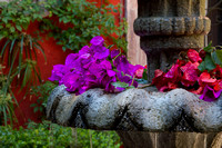 Casa Luna fountain with petals in foregroun